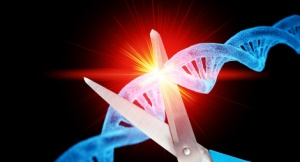 CRISPR - Genschere